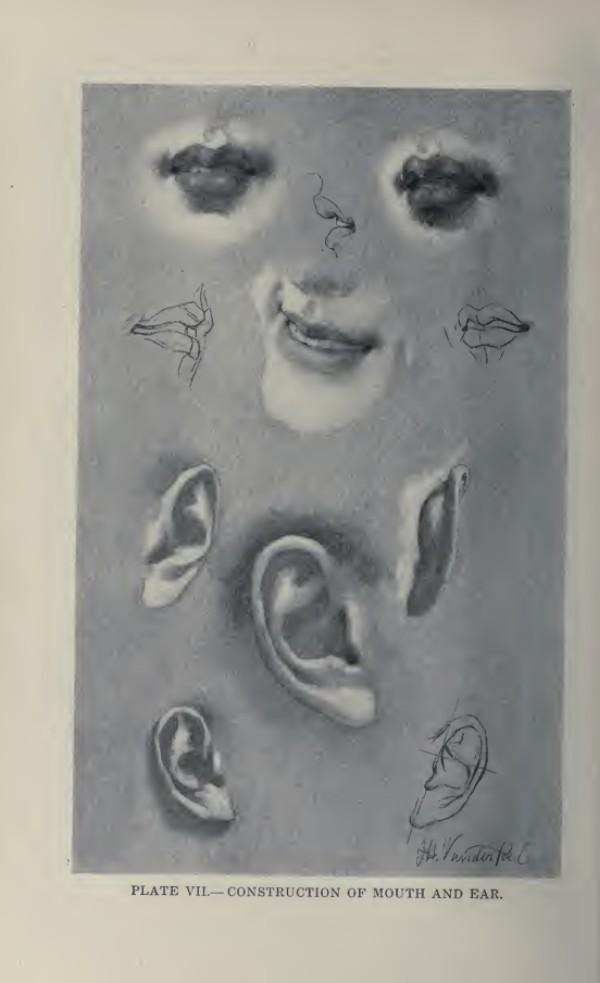 lamina-la-figura-humana-vanderpoel-bocas-y-orejas