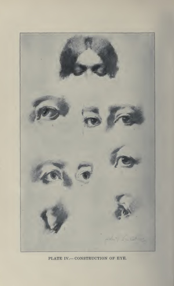 lamina-la-figura-humana-vanderpoel-ojos