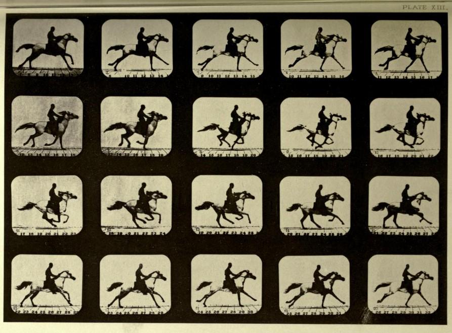 el-movimiento-del-caballo-muybridge-fotografia-secuencia