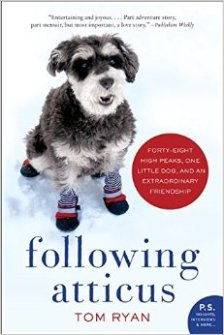 Following Atticus cover