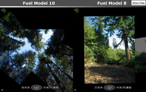 Microsoft Forest Fire Modeling Photo Analysis