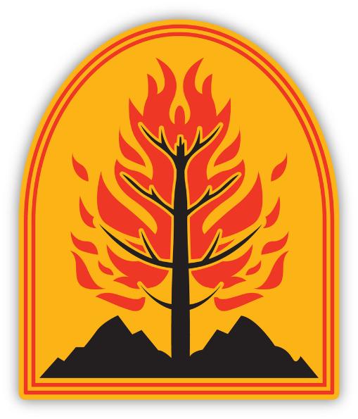 wild-fire