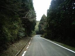 2005_0409_115727AA_s