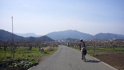2007_0415_091255aa_s