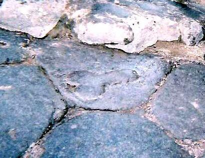 Pênis no chão de Pompéia