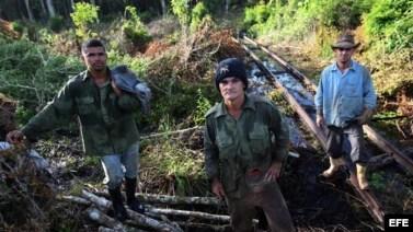 La vida siempre difícil de los carboneros cubanos