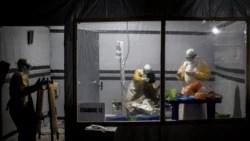 Quiz - Scientists make progress in treating Ebola virus