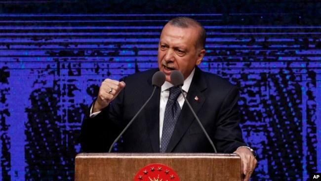 Archivo. El presidente de Turuqía, Recep Tayyip Erdogan, anuncia plan de acción para los primeros 100 días de su nueva presidencia en Ankara el 3 de agosto de 2018.