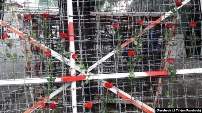 """Image result for cài hoa hồng lên hàng rào kẽm gai trước đó được dùng để quây khu vực """"trại giam"""""""