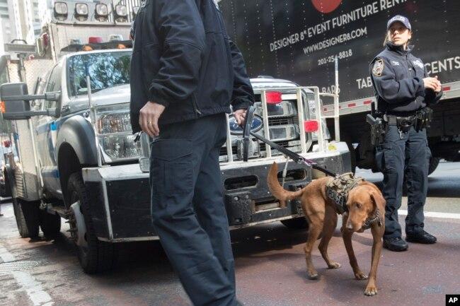 Personal de emergencia con un perro detector de bombas trabaja fuera del edificio donde está la oficina del gobernador de Nueva York, el demócrata Andrew Cuomo, después que se reportó un paquete sospechoso enviado al gobernador. Oct. 24 de 2018.