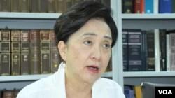 资料照:香港民主党前主席和前立法会议员刘慧卿