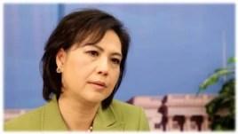Khoa học gia Dương Nguyệt Ánh chia sẻ câu chuyện trong phim VietnAmerica.