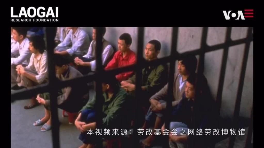 """劳改基金会柳暗花明,网络博物馆""""网""""开全球"""