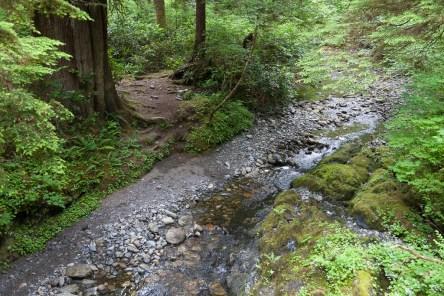 Camper Creek to Thrasher Cove