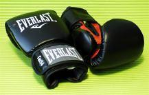 Everlast_Fighter_2