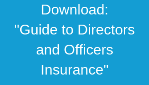 Download D&O Guide