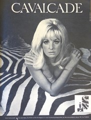 """Advertisement for Cavalcade, a new GDR perfume promising """"a racy scent"""" (Sibylle 6 1969)."""