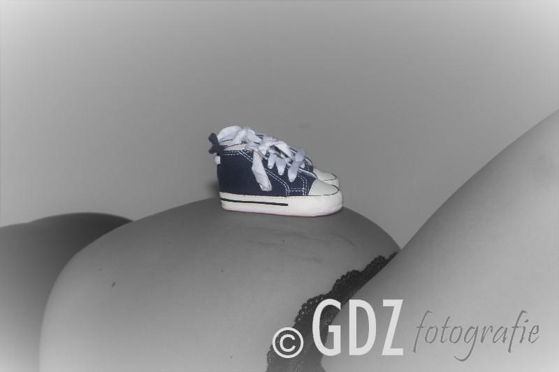 6-GDZ_8585