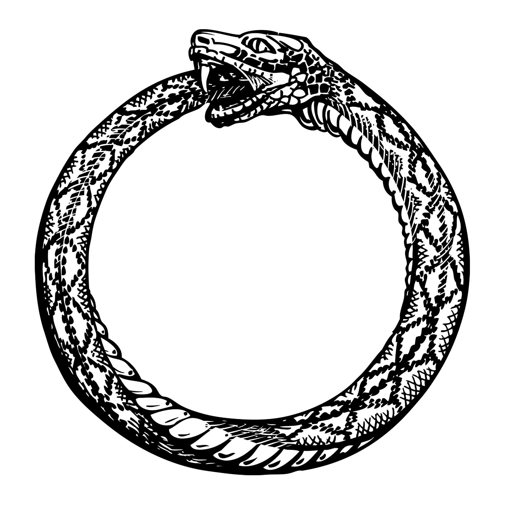 OUROBOROS o Uroboro - Il serpente infinito | Storia dei simboli
