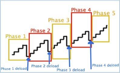 linear-periodization