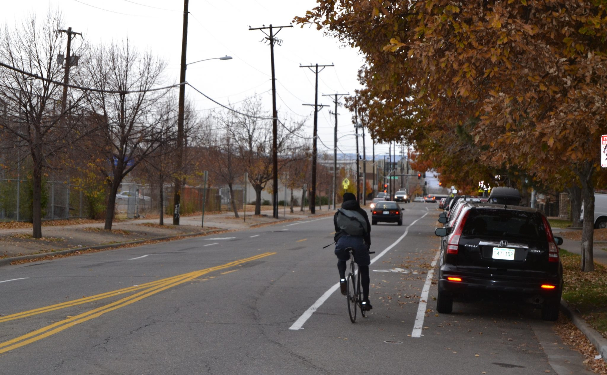 Bike Lane Getting Doored on Bike