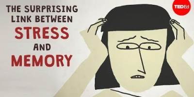 The Link Between Stress and Memory