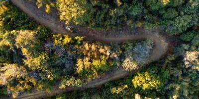 Soil Searching: Dillon Osleger