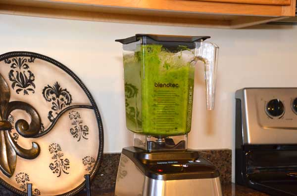 5-BlendTec-Nutrition-Green-Smoothie-GearChase