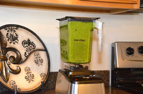 7-BlendTec-Nutrition-Green-Smoothie-GearChase