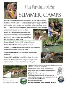 summer camp flyer copy