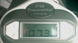 USB Fever/iPDA Auto Charger/FM Transmitter for 5G iPod Review