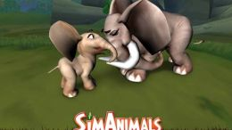 Nintendo DS & Wii Game Review: SimAnimals Africa