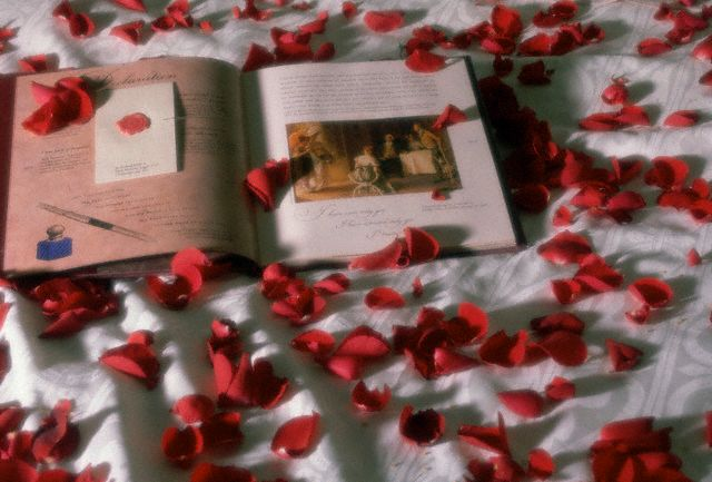 Bed of Red Rose Petals and Book