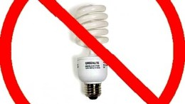 Why I Hate Compact Florescent Lightbulbs