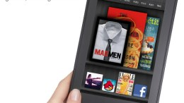 State of the eBook: It's a Post-Kindle Fire World!