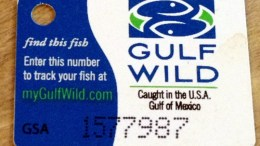 Tracking Fresh Seafood with Track Your Fish on MyGulfWild.com