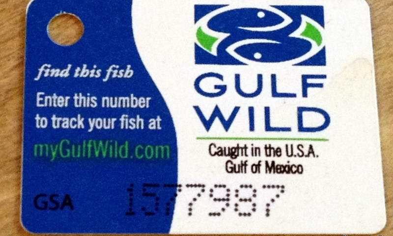 geardiary-find-my-fish-mygulfwild.50