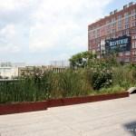 New York City's High Line Park is a Raised Treasure