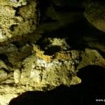 Exploring the Captivating Carlsbad Caverns
