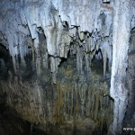 Exploring the Captivating Carlsbad Caverns