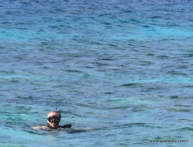 Amazing Aruba!  Amazing Aruba!  Amazing Aruba!  Amazing Aruba!  Amazing Aruba!  Amazing Aruba!  Amazing Aruba!  Amazing Aruba!  Amazing Aruba!  Amazing Aruba!  Amazing Aruba!  Amazing Aruba!  Amazing Aruba!  Amazing Aruba!  Amazing Aruba!  Amazing Aruba!  Amazing Aruba!  Amazing Aruba!  Amazing Aruba!  Amazing Aruba!  Amazing Aruba!  Amazing Aruba!  Amazing Aruba!  Amazing Aruba!  Amazing Aruba!  Amazing Aruba!  Amazing Aruba!  Amazing Aruba!  Amazing Aruba!  Amazing Aruba!  Amazing Aruba!  Amazing Aruba!  Amazing Aruba!  Amazing Aruba!  Amazing Aruba!  Amazing Aruba!  Amazing Aruba!  Amazing Aruba!  Amazing Aruba!  Amazing Aruba!  Amazing Aruba!  Amazing Aruba!  Amazing Aruba!  Amazing Aruba!  Amazing Aruba!  Amazing Aruba!  Amazing Aruba!  Amazing Aruba!  Amazing Aruba!  Amazing Aruba!  Amazing Aruba!  Amazing Aruba!  Amazing Aruba!  Amazing Aruba!  Amazing Aruba!  Amazing Aruba!  Amazing Aruba!  Amazing Aruba!  Amazing Aruba!  Amazing Aruba!  Amazing Aruba!
