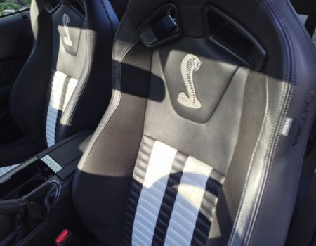 2013 Ford Shelby GT500 is All That  2013 Ford Shelby GT500 is All That  2013 Ford Shelby GT500 is All That  2013 Ford Shelby GT500 is All That