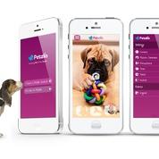 PetziConnect Lets You Send Your Dog Remote Treats and Praise