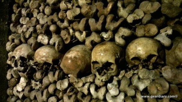 The skeletons are a sobering and yet magnificent reminder of our mortality