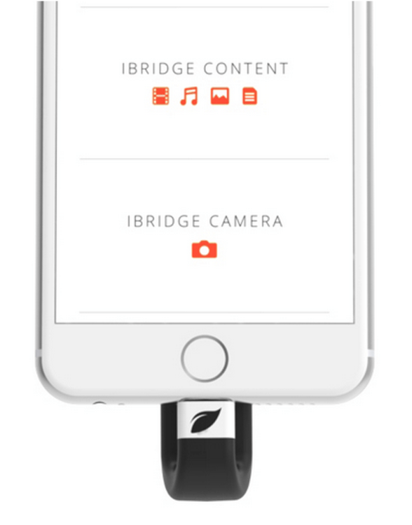 You'll Never Run Out of Memory Again if You Have the Leef iBRIDGE