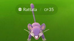 My City Has a Rattata Problem: A Concerned Pokemon Go Player
