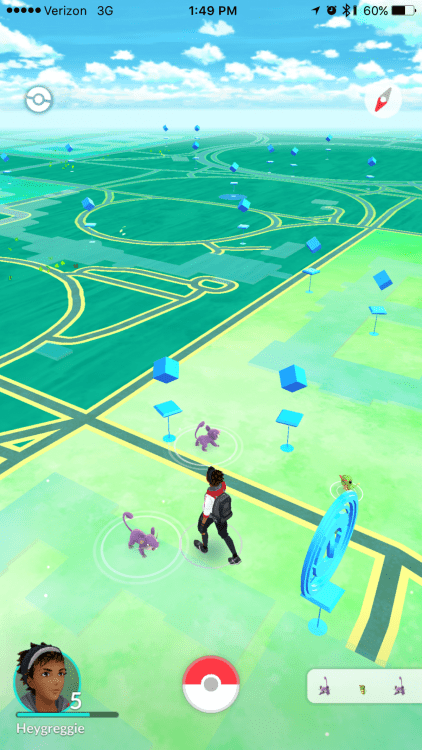 GearDiary My City Has a Rattata Problem: A Concerned Pokemon Go Player