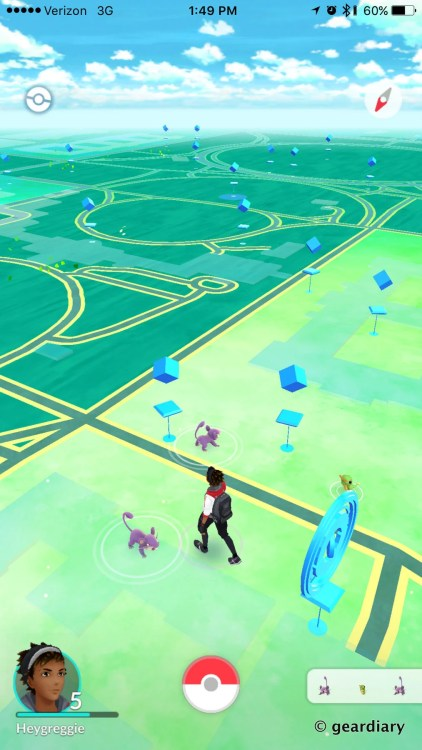 My City Has a Rattata Problem - A Concerned Pokemon Go Player-006