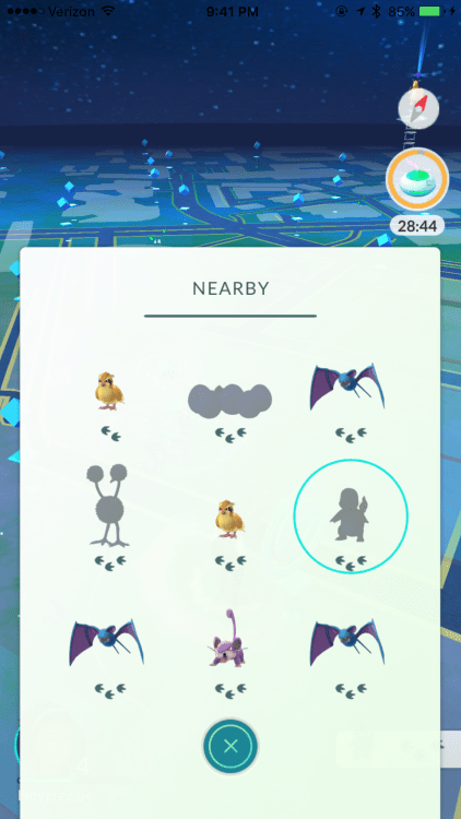My City Has a Rattata Problem - A Concerned Pokemon Go Player