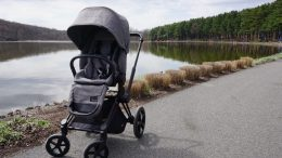 The Cybex Priam Stroller with Cloud Q Infant Car Seat Is a Premium Travel System That Grows with Your Child